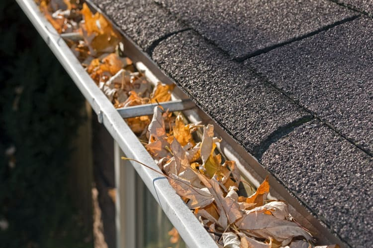 Home Maintenance checklists recommend cleaning out your gutters